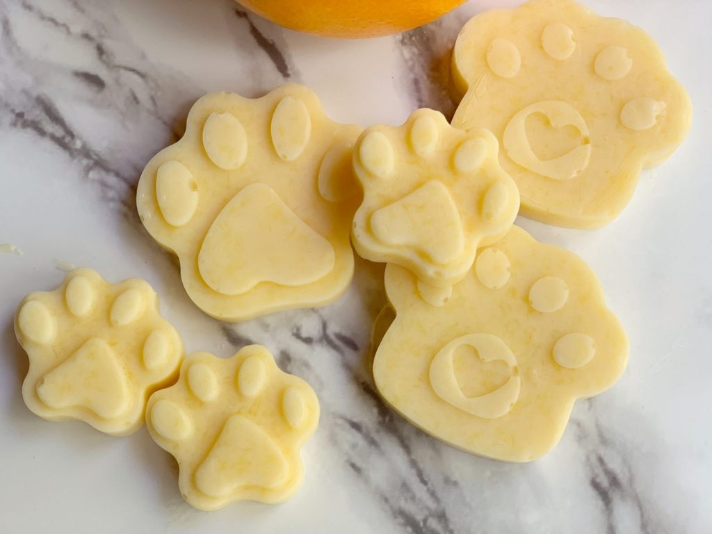 homemade frozen dog treats with oranges